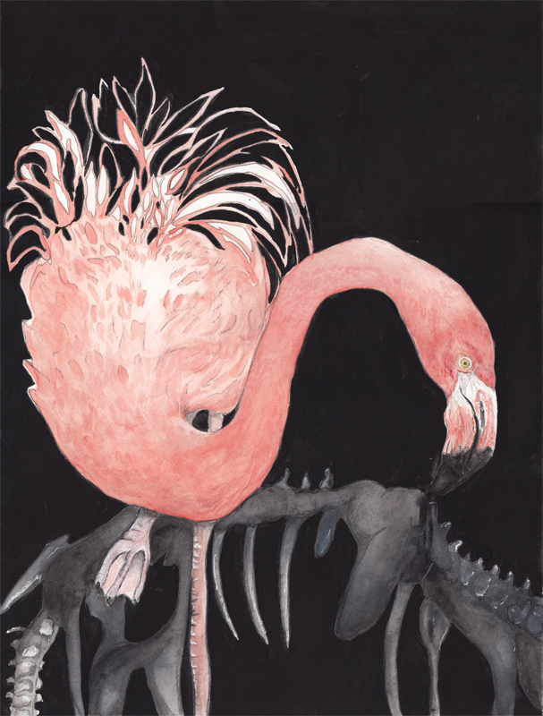 Flamingo, ink aqurel and gouache on paper, 2016